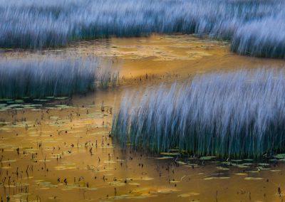 Acadia-National-Park-Photo-Workshop004