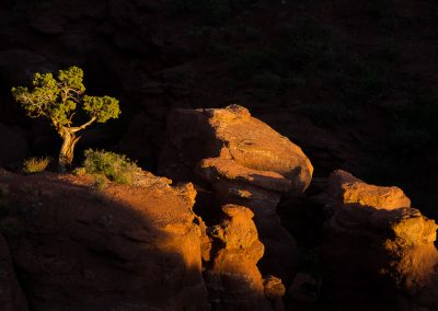 Arches-Canyonlands-National-Park-Photography-Workshop008