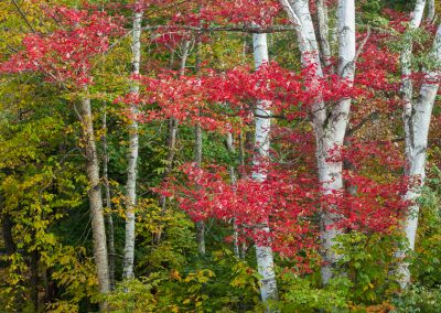 Autumn-in-Vermont-Photo-Workshop010