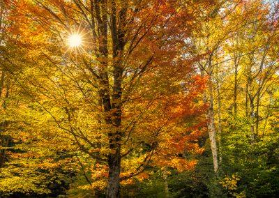 Autumn-in-Vermont-Photo-Workshop012