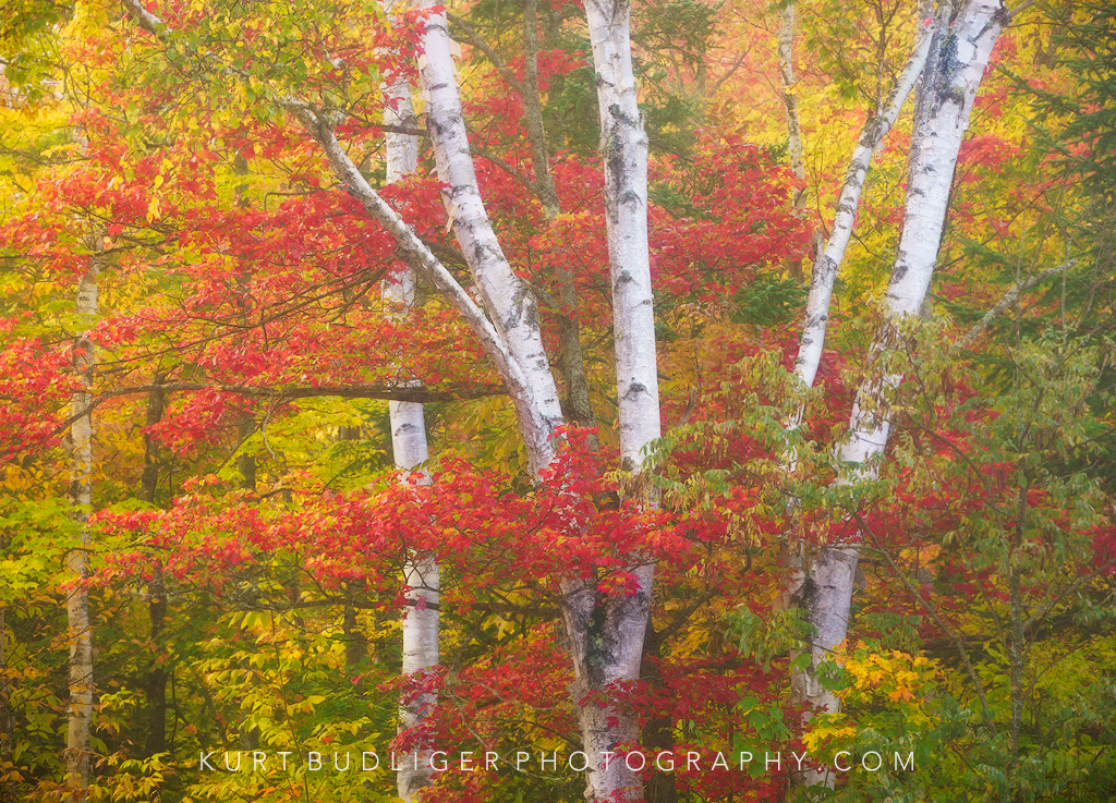 Autumn in Vermont Photo Workshop