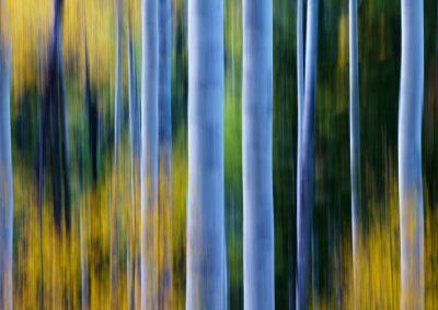 Colorado-Photography-Workshop003