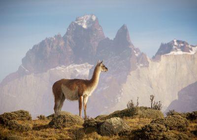 PatagoniaPhotoTour020