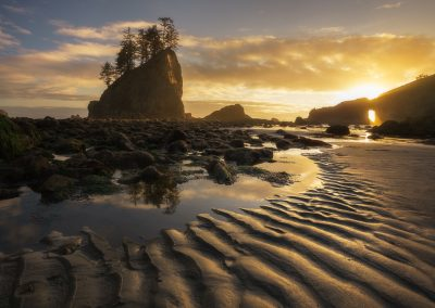 Second Beach Olympic National Park Sunset