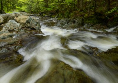 spring flows on a Vermont stream